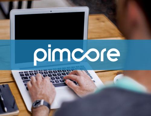 Pimcore: Google Maps API Key korrekt einbinden